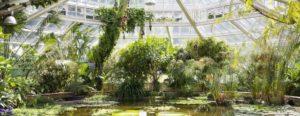 Jardins de Meise avec les Voyages Degrève